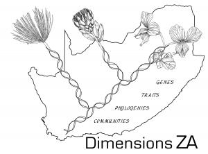 Dimensions ZA_bw final